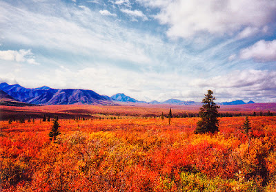 Hermoso paisajes en Alaska.