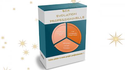 un cadeau original et utile pour 2018 dans ACTUALITE Box_evolution_pro