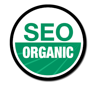 SEO Fundamentals for Improving Organic Search Rankings