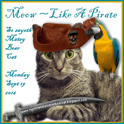 Meow Like A Pirate