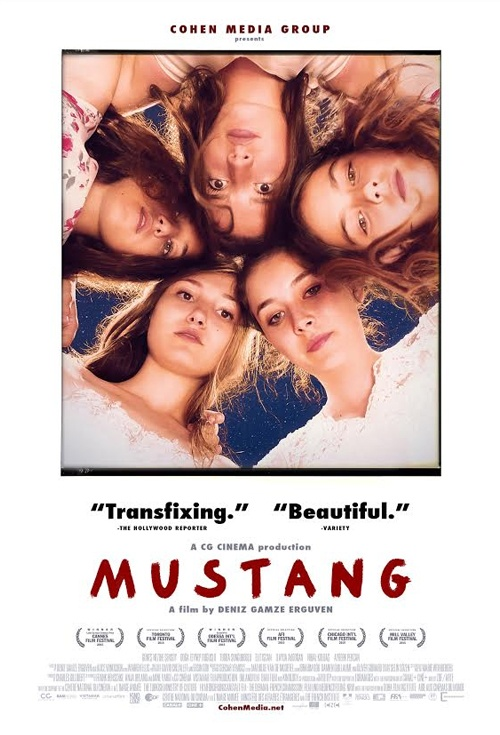 Mustang (2015) BluRay 720p 650MB