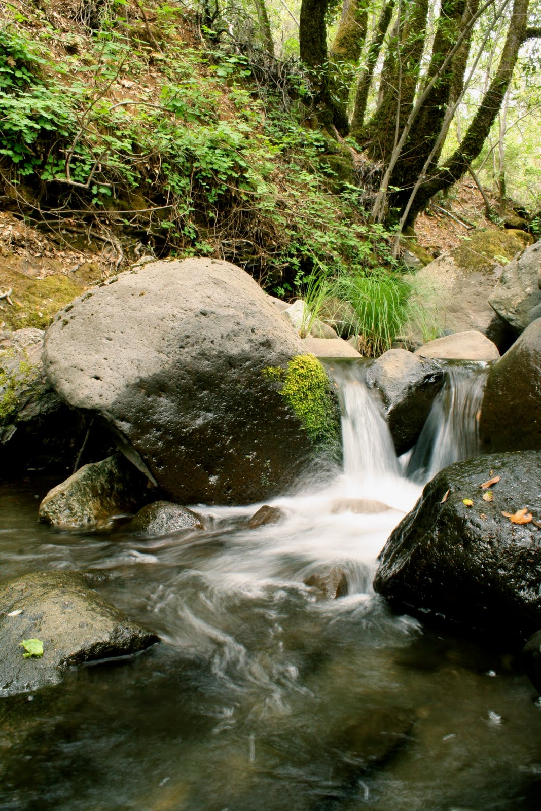 Mercedes Benz Of San Francisco >> DOUGLASCAIN: Camping at Harbin Hot Springs in Lakes County