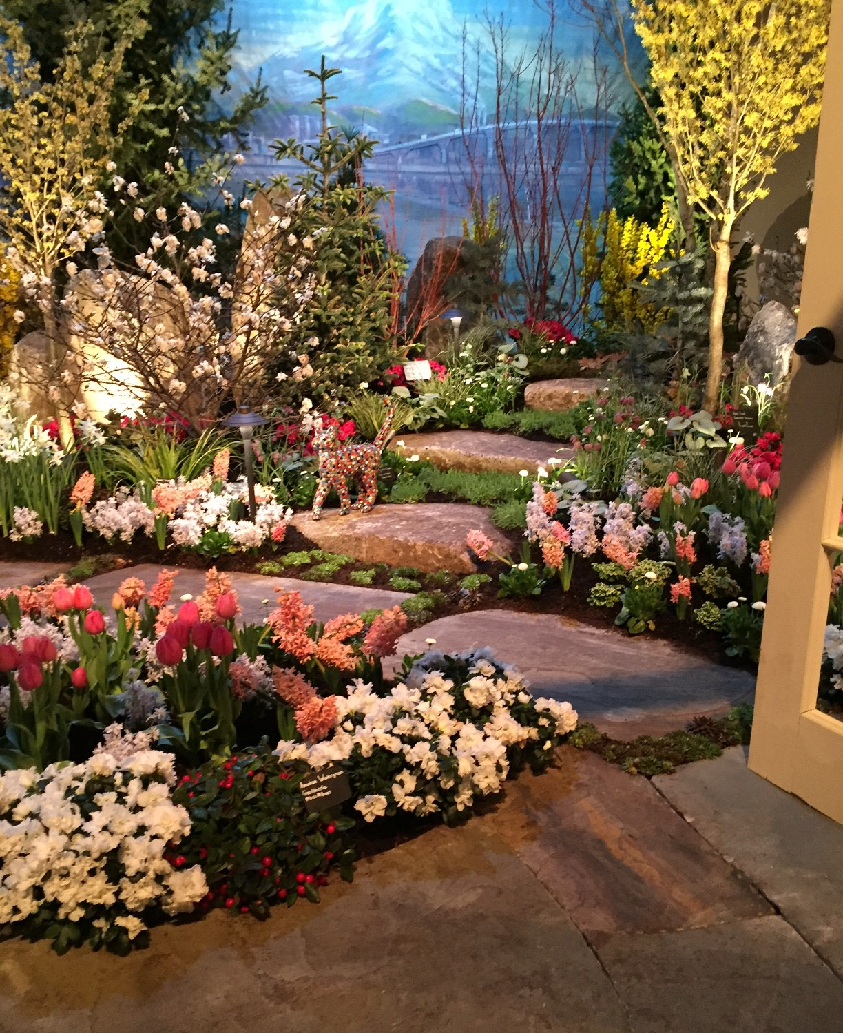 Marine Hills Garden Club: A few photos from the Flower and Garden Show