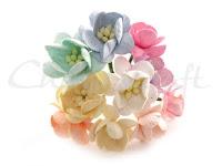 https://cherrycraft.pl/pl/p/Kwiat-wisni-MIX-PASTELOWY-10-szt.-Wild-Orchid-Crafts-/2636