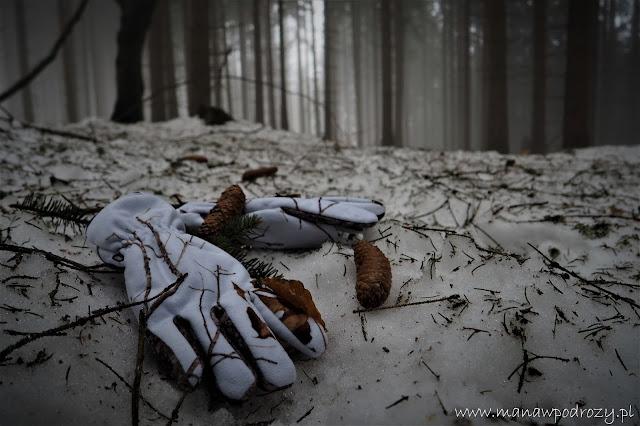 Recenzja rękawic neoprenowych Jack Pyke oraz rękawic Mil-Tec Hunter Wild Tree Snow.