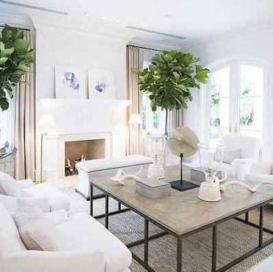 rumah minimalis dengan warna putih yang cantik