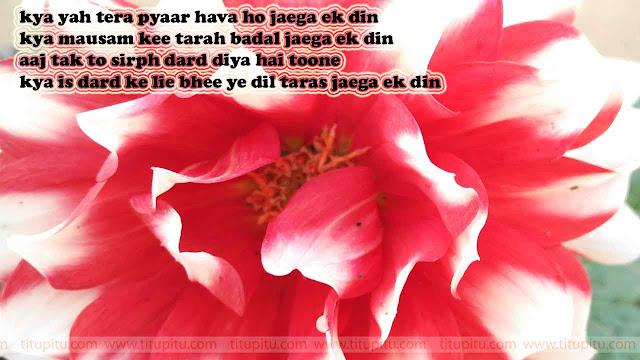 Dard-bhari-Shayari-in-hinid