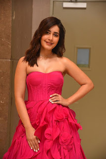 Indian Actress Rashi Khanna at Prathi Roju Pandage Movie Function (5)