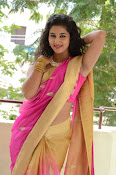 pavani new photos in saree-thumbnail-17