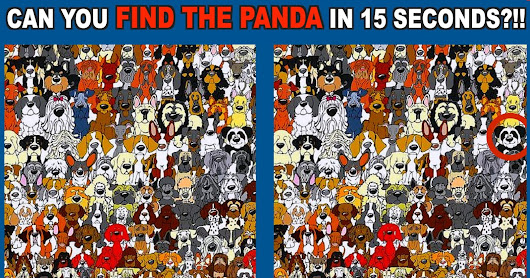 "Best of ""Find The Hidden Panda"" Puzzle Game"