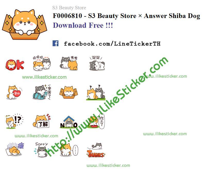 S3 Beauty Store × Answer Shiba Dog