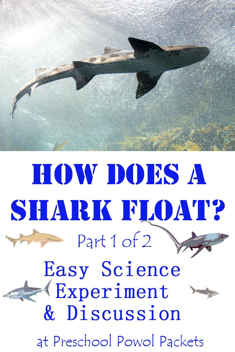 ocean unit measurement kindergarten ebook
