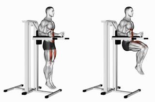 Knee raise exercises