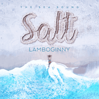 "Lamboginny Unveils Cover Art And Tracklist For New Album ""Salt"", Features Olamide, Small doctor and others"