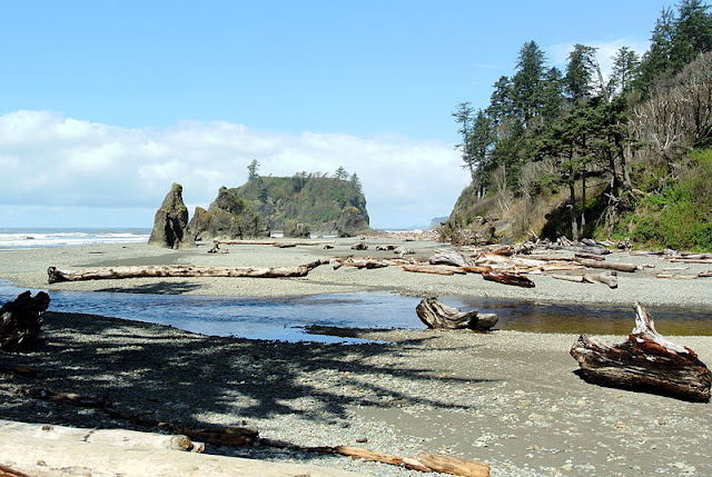 For an Adventure Holiday You Won't Forget Head to the Pacific Northwest