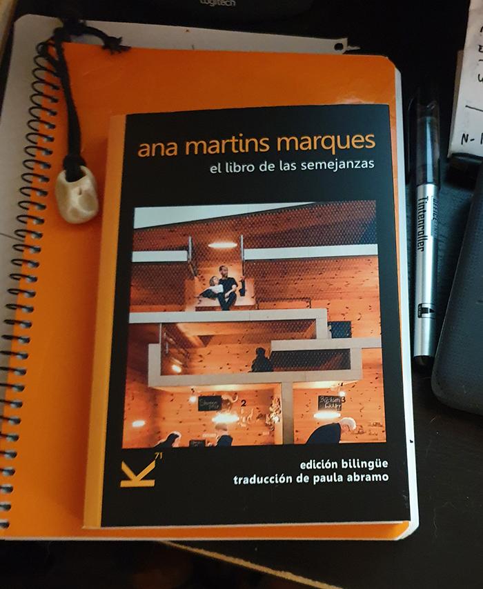 Aprender a leer el silencio con la poesía de Ana Martins Marques