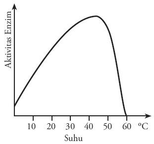 Grafik pengaruh suhu aktivitas enzim