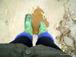 Muddy paws whilst walking the dog fashion beauty lifestyle blog blogger uk