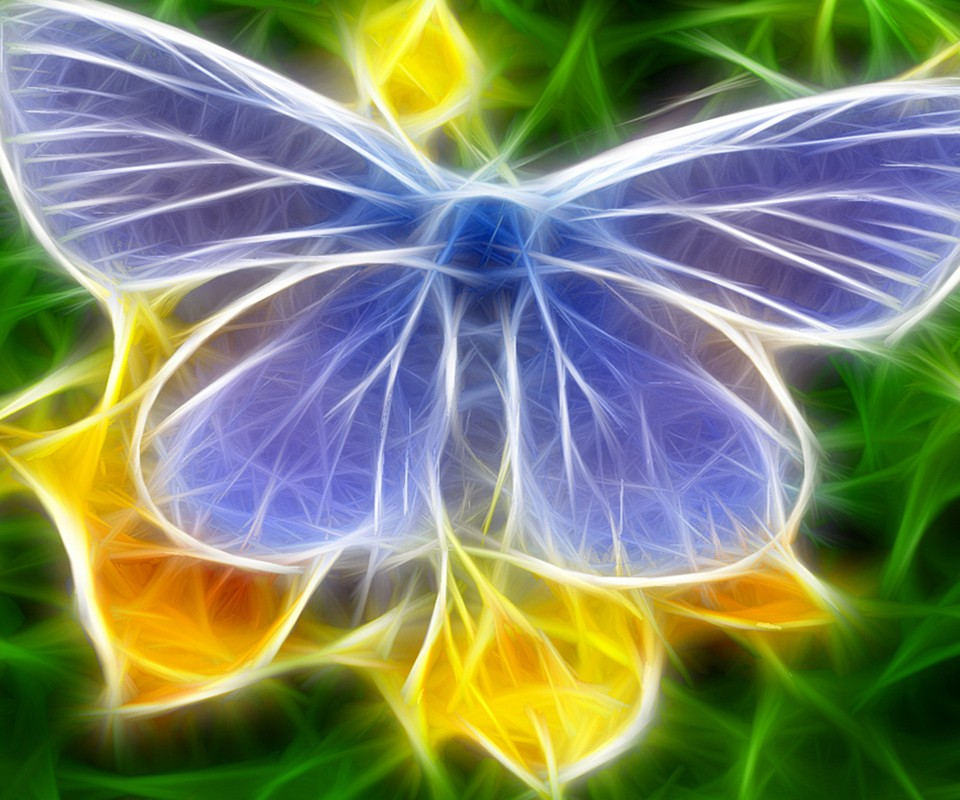 Butterfly Wallpaper For Mobile Phone Hd