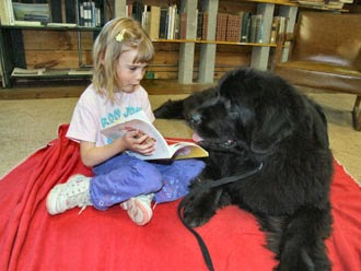 Top dog breeds for kids - LUV My dogs