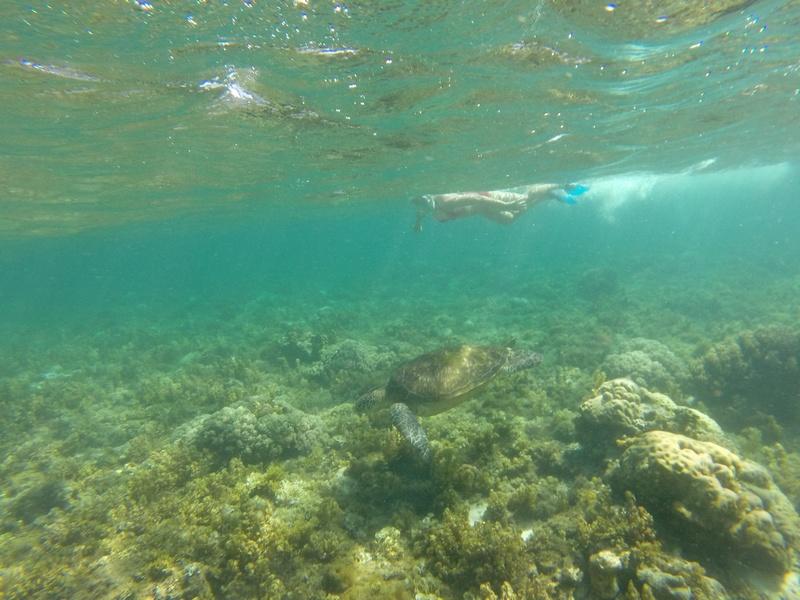 masque easybreathe de decatlhon pour le snorkelling