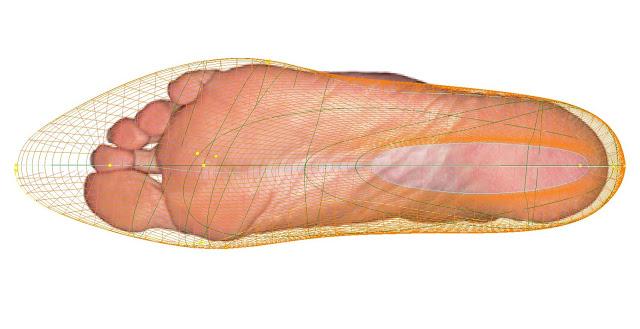 cercetatorii au corelat dimensiunea talpilor picioarelor cu speranta de viata