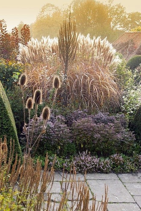 Patti Friday: Top 15 Garden Design Trends 2015