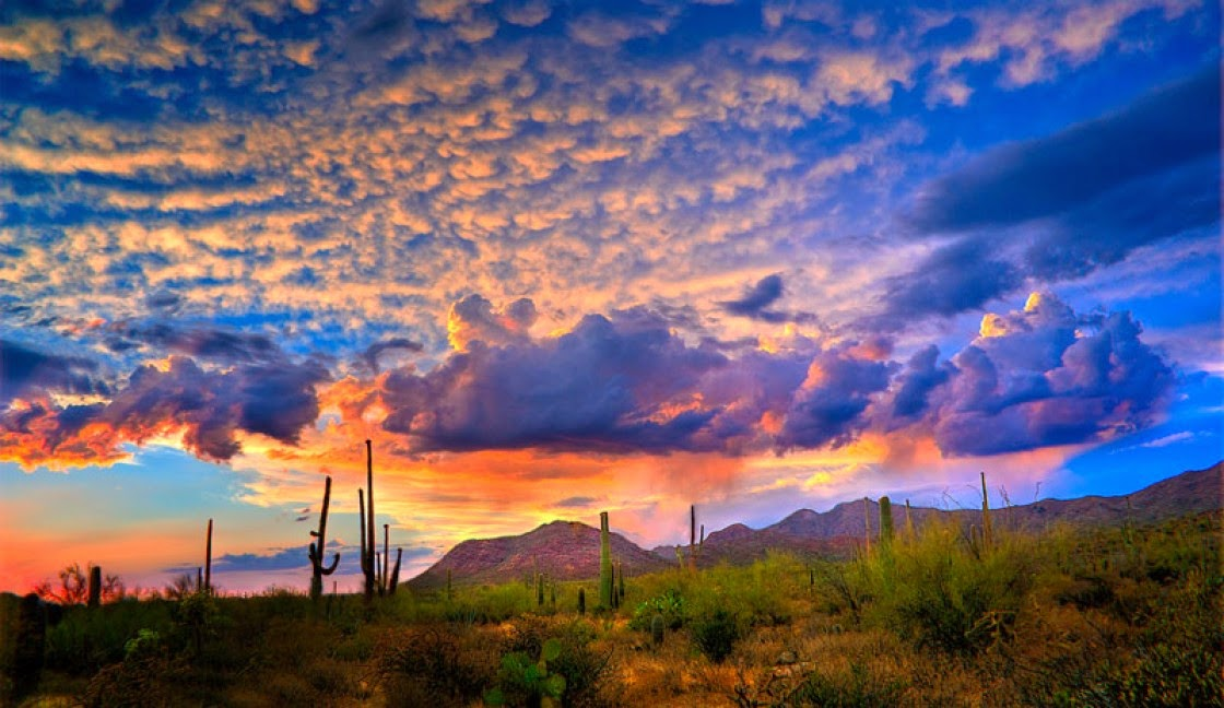 Tucson, Arizona, USA | 10 Places to See Beautiful Sunset Around The World