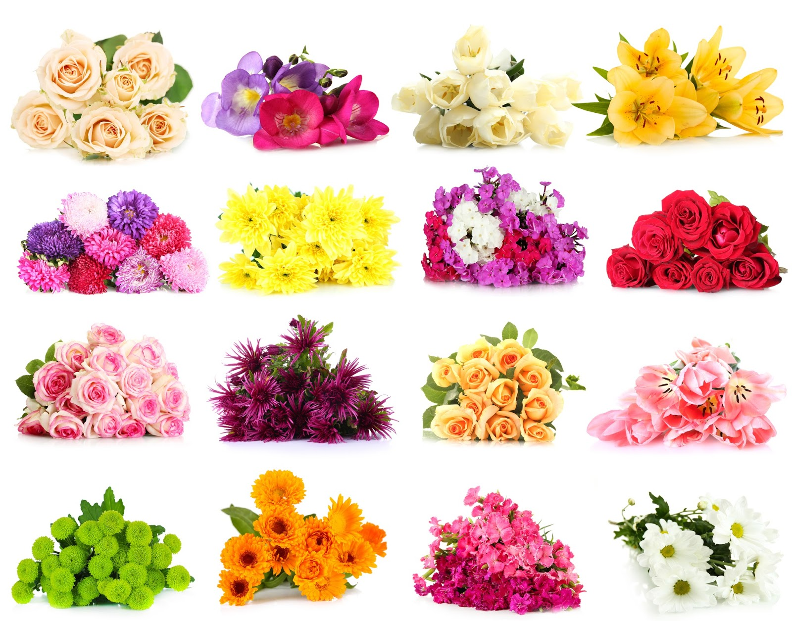 BANCO DE IMÁGENES: 50 Fotos De Flores Y Arreglos Florales
