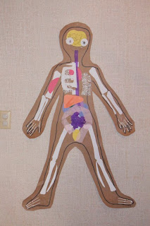Body Map Anatomy Project for Kids