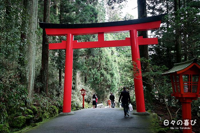 torii hakone jinja donnant sur la forêt