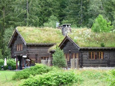 屋根にも草花が茂った山小屋 シャモニー渓谷
