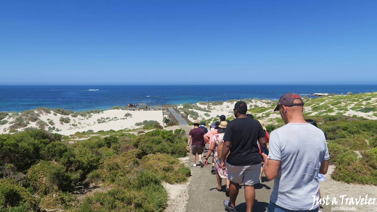 Adelaide-Kangaroo Island-Seal Bay Conservation Park-Transportation-Ferry-Attractions-Itineraries-Recommendation-Travel Blogs-Back-Pack Travel-Independent Travel-Tour-Day Tour-Two Day Tour-Adelaide