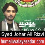 https://www.humaliwalyazadar.com/2018/09/syed-johar-ali-rizvi-nohay-2019.html