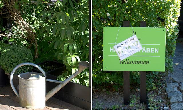 Haveplaner og plantebegejstring holder åben have