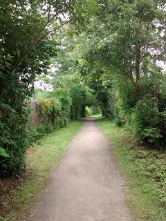 Parc Bois-de-liesse boucle Camille sentier bordé d'arbres