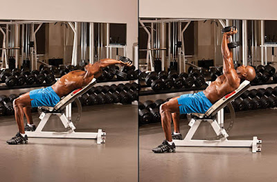 Incline Dumbbell Pullovers