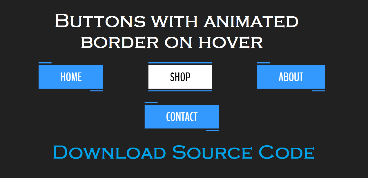 Buttons with animated border on hover [Source Code] - Hello Dear Code