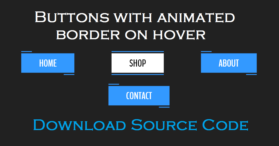 Buttons with animated border on hover [Source Code] - Hello