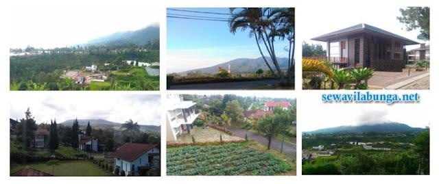 Suguhan keindahan alam,pegunungan dan pedesaan