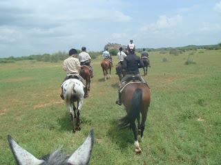 botswana, ratsastusmatka, riitta reissaa
