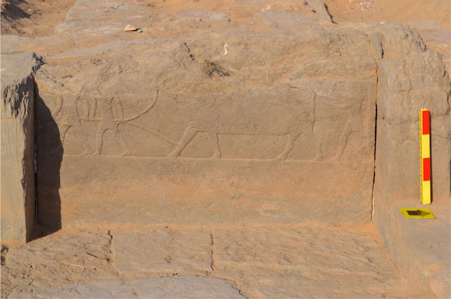 Long searched for causeway of Sarenput I found in Aswan