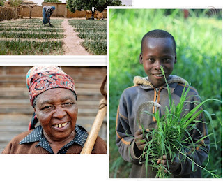 Farming family in Liberia Africa