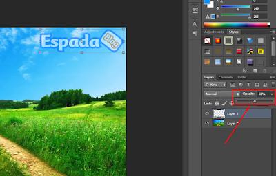 Cara Membuat Watermark Pada Gambar Dengan Photoshop 4