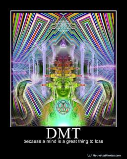 dmt la molecola dello spirito  DMT: la Molecola dello Spirito?