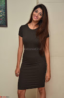 Priya Vadlamani super cute in tight brown dress at Stone Media Films production No 1 movie announcement 027.jpg