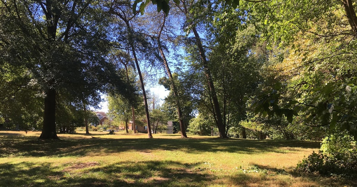 Around The Corners : Could Woodmoor have a dog park?