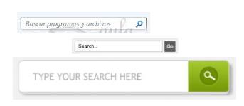 Campos de búsquedas