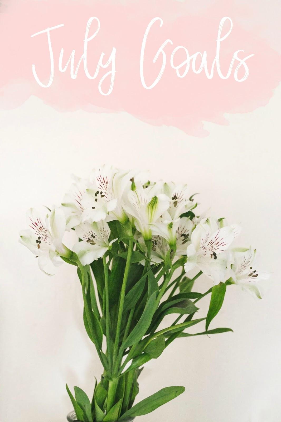 Flowers, Bloom, July Goals, Derbyshire Blogs, Derbyshire Bloggers, East Midlands Bloggers, East Mids, Katie Brown, Blogger, Katie Writes Blog, Katie Writes,