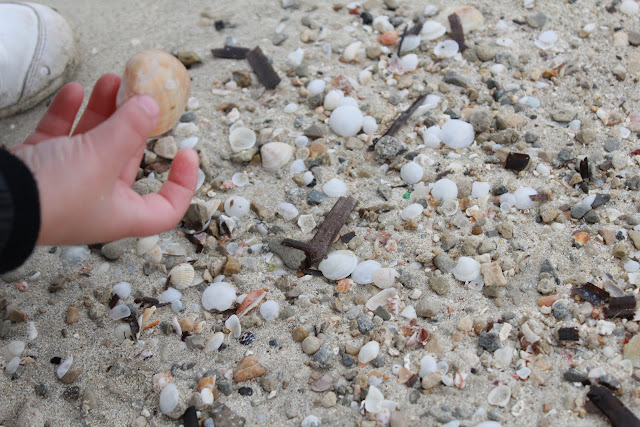 Playa, conchas DIY